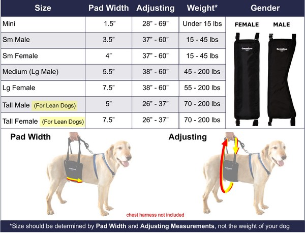 GingerLead Sizing Chart with Tall Variations