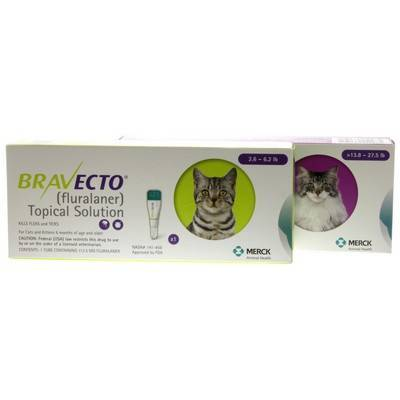Bravecto for Cats at VetRxDirect