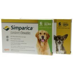 Simparica Chewables for Dogs Kill Fleas and Ticks
