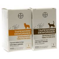 Tapeworm Dewormer Praziquantel for Dogs and Cats