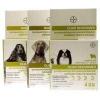 Quad Dewormer Broad Spectrum Chewable for Dogs