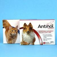 Antinol Nutritional Supplement for Daily Joint Care in Dogs and Cats