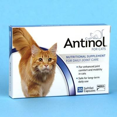 Antinol for Cats 30 Softgel Caps for Daily Joint Care