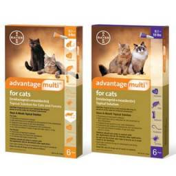 Advantage Multi for Cats Heartworm, Flea and Tick Topical