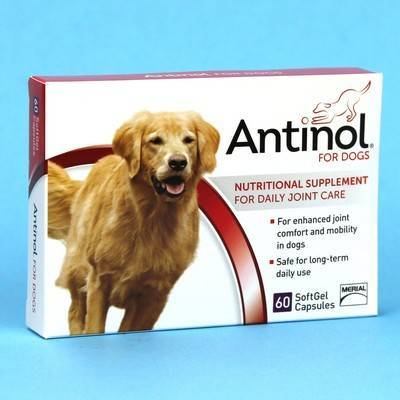 Antinol - for Dogs, 60 SoftGel Capsules