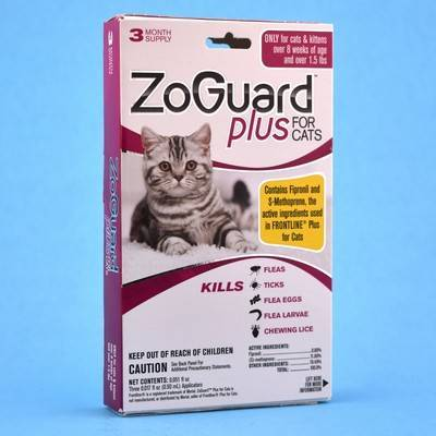 Dog Zoguard On Cats
