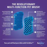 Furbliss Infographic