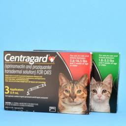 Centragard Transdermal Heartworm Prevention Solution for Cats