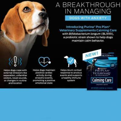 Purina Calming Probiotic Supplement for Dogs
