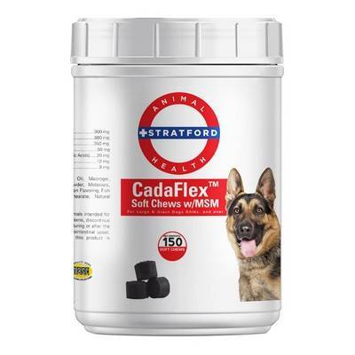 CadaFlex Soft Chew w/MSM for Dogs - Joint Health | VetRxDirect