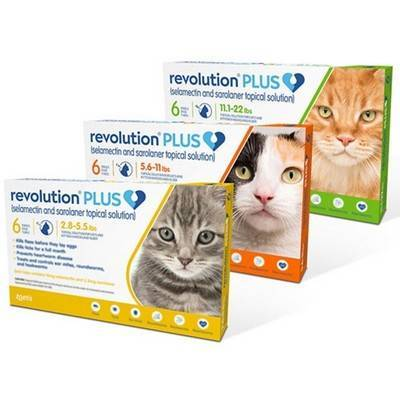 Revolution PLUS (selamectin + sarolaner) for Cats