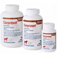 Carprovet (carprofen) Chewable Tablets for Dogs by Dechra