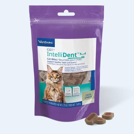 IntelliDent Cat Bites Support Healthy Teeth and Gums