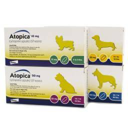 Atopica (cyclosporine) for Dogs Atopic Dermatitis