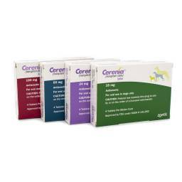 Cerenia anti-nausea medication for dogs