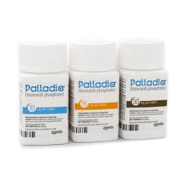 Palladia Cancer Drug for Dogs