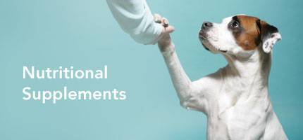 Dog Health Nutritional Supplements