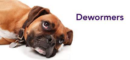 Dog Health Dewormers