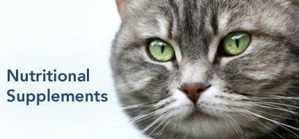 Cat Health Nutritional Supplements