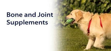 Dog Bone and Joint Supplements