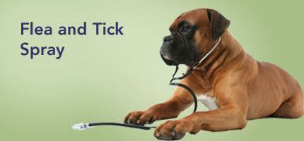 Dog Flea and Tick Spray