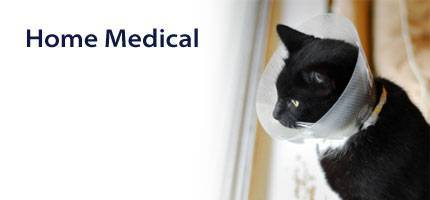 Cat Home Medical