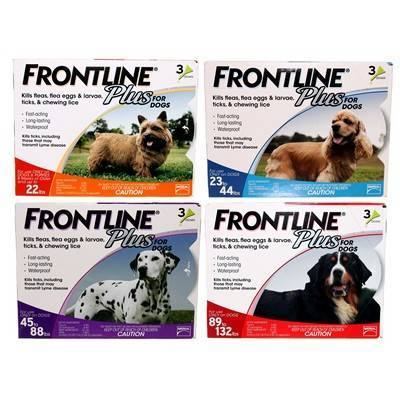 Frontline Plus For Dogs Flea And Tick Protection