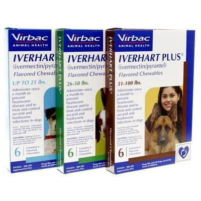 Iverhart Plus Chewable Heartworm Preventative for Dogs