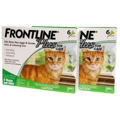 best cat repellent for gardens