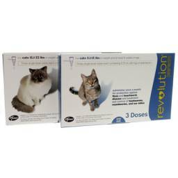 Revolution for cats once a month for protection against fleas and heartworm disease