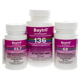 Baytril Taste Tabs for Dogs and Cats Enrofloxacin