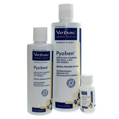 Pyoben Shampoo and Gel for dogs and cats