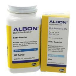 Albon Treats Diarrhea Caused by Coccidia