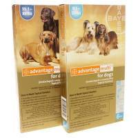 Advantage Multi Heartworm, Flea and Tick for dogs