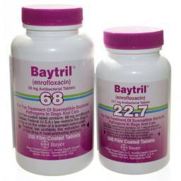Baytril Film Coated Tablets for Dogs and Cats