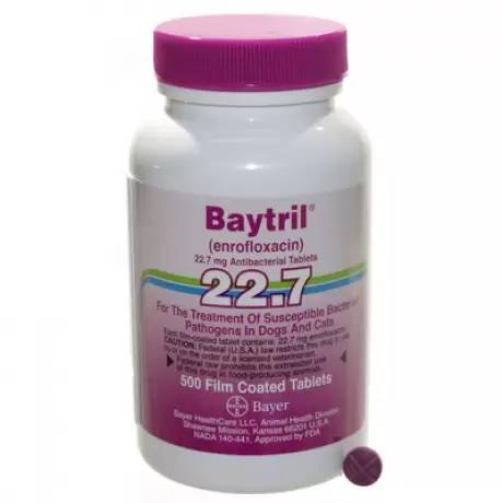 Baytril Film Coated Tablets for Dogs and Cats 22.7mg