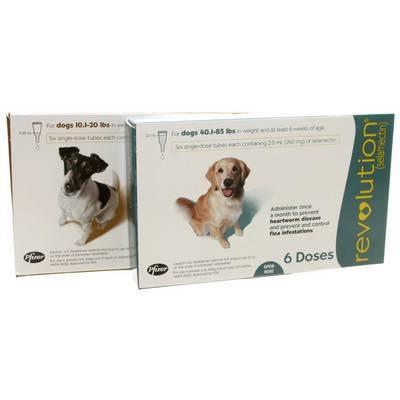 Revolution For Dogs Heartworm Flea Med Vetrxdirect