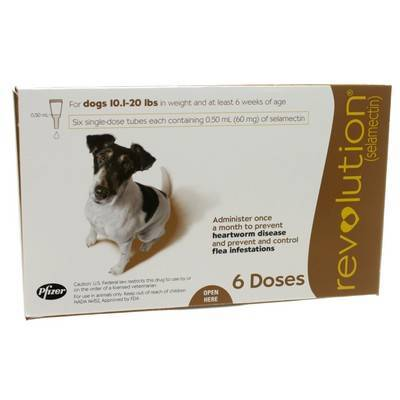 Heartworm medication for dogs revolution