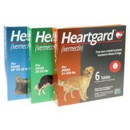 Unflavored Heartgard Tablets for Dogs Ivermectin for Heartworm