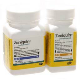 Zeniquin antibiotic tablets for dogs