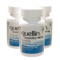 quellin for Dogs Carprofen Soft Chewables