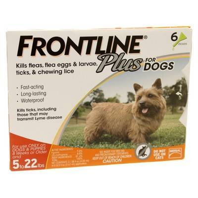 Frontline Plus for Dogs 5 to 22lbs 6 Doses