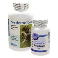 Proanthozone Antioxidant Supplement for Dogs