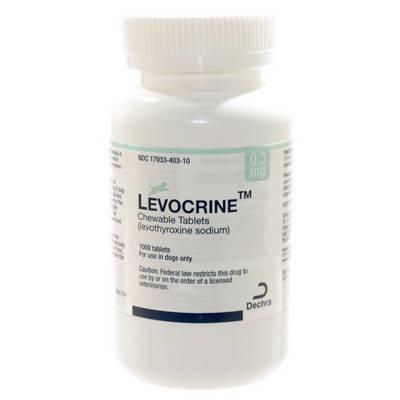 Levothyroxine Free Shipping
