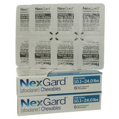 NexGard for Dogs 10.1 to 24lbs 12 Chewables