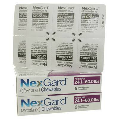 NexGard for Dogs 24.1 to 60lbs 12 Chewables