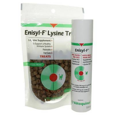 Enisyl-F L-Lysine treats and paste for cats with feline herpes virus