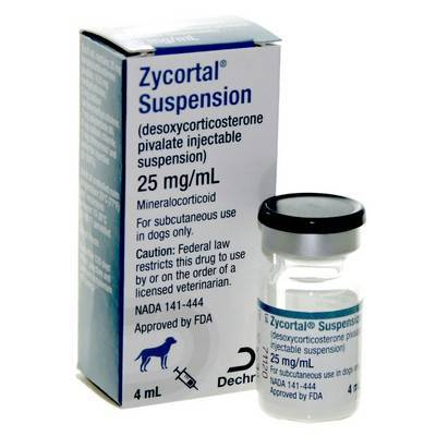 Zycortal Suspension Addison S Disease In Dogs Vetrxdirect